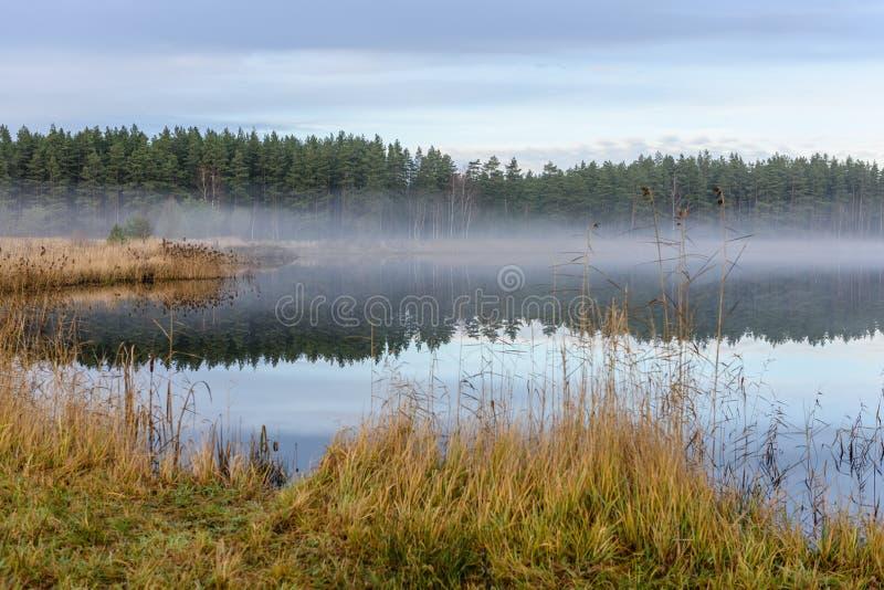 lac avec des réflexions de l'eau dans le jour coloré d'automne photographie stock libre de droits