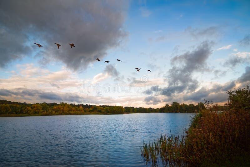 Lac avec les nuages dramatiques et les canards volant plus de photographie stock libre de droits