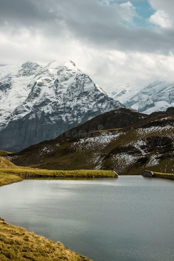 Lac Bachalpsee avec le fond de montagne image stock