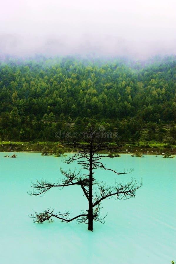 Lac Bita images libres de droits