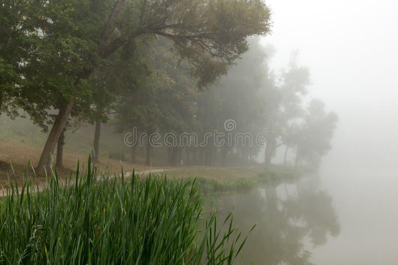 Download Lac Brumeux Pendant Le Matin Photo stock - Image du silhouette, été: 77150852