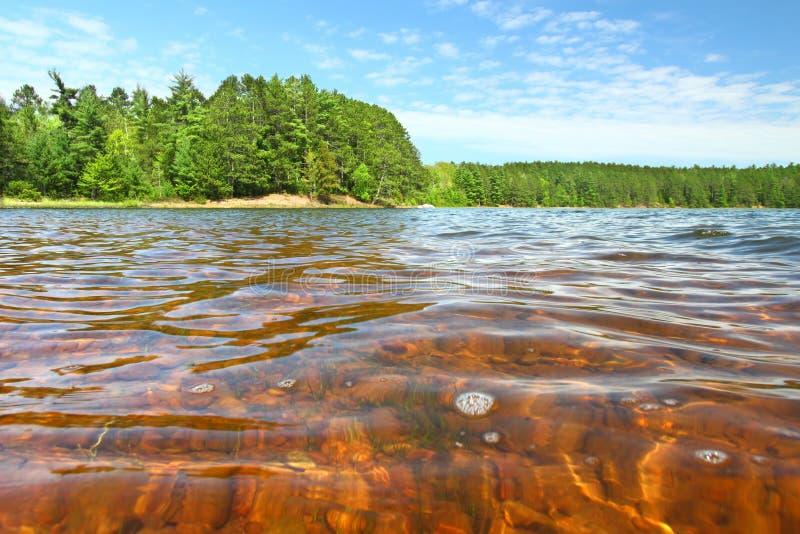 Lac buffalo de Northwoods le Wisconsin images libres de droits