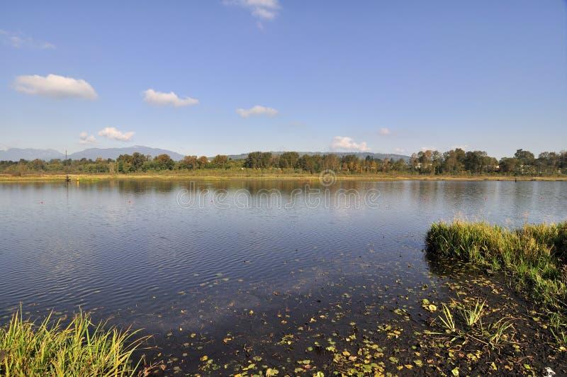 Lac Burnaby images libres de droits