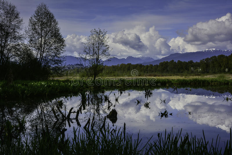 |Lac Burnaby images libres de droits