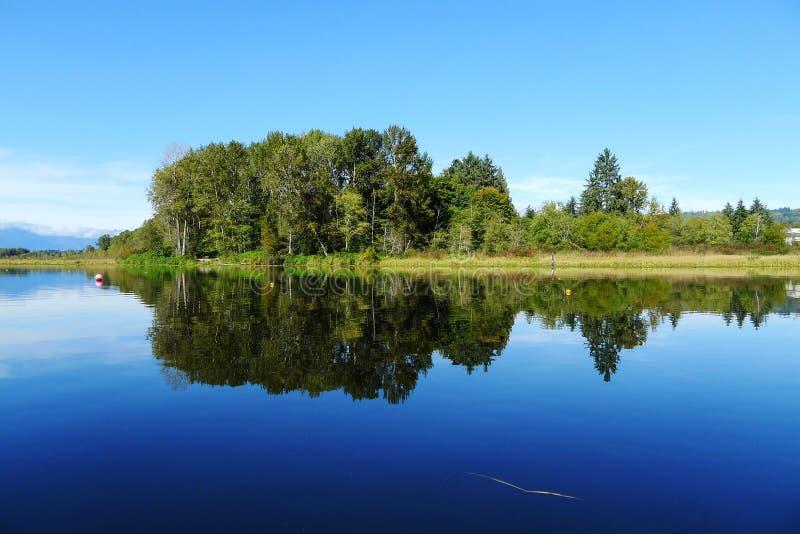 Lac Burnaby avec la réflexion d'arbre en été images libres de droits
