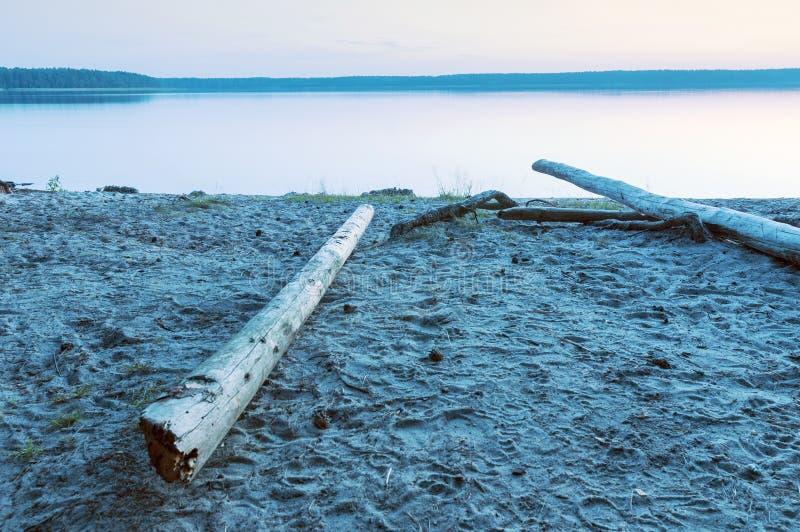 Lac calme de forêt image libre de droits