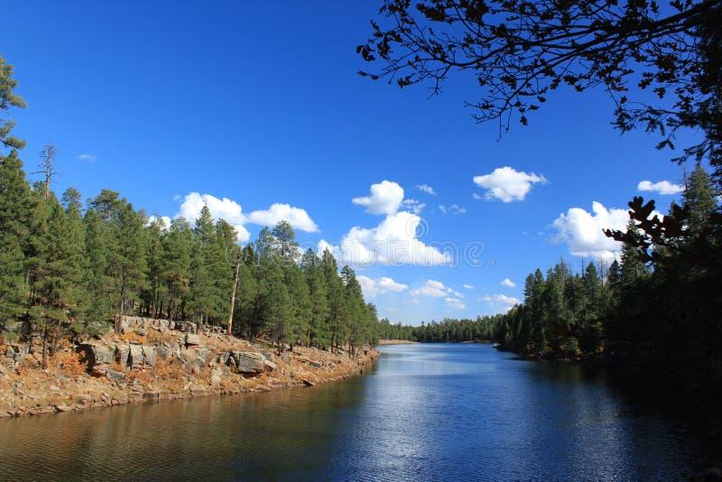 Lac canyon en bois photo libre de droits