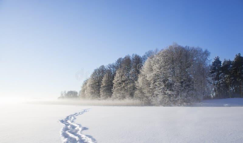 Lac congelé avec des copies de chaussure photo libre de droits
