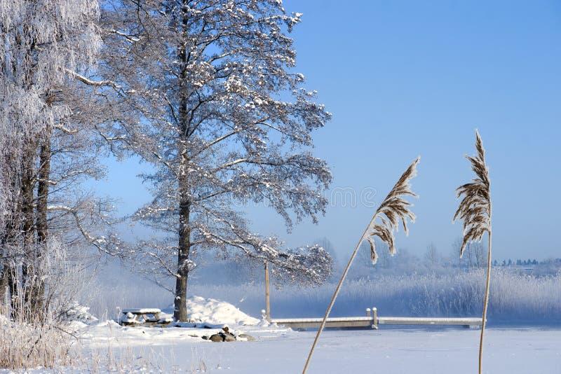 Lac congelé avec la jetée photos stock