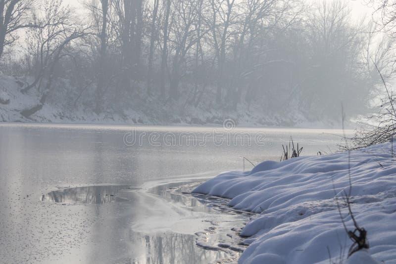 Lac congelé dans le lac d'hiver de forêt sous la neige images libres de droits