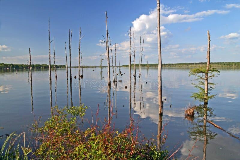 Lac Conway, Arkansas, Etats-Unis photographie stock libre de droits