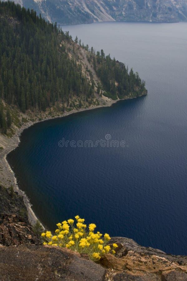 Lac crater avec des Wildflowers images stock