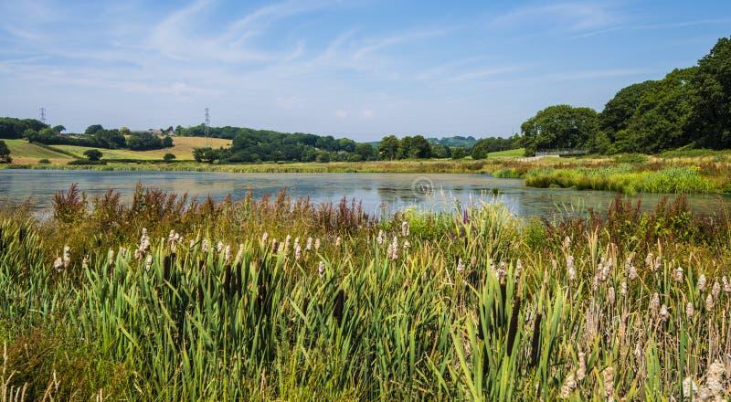 Lac Crowhurst, au nord-ouest de Hastings, le Sussex est, Angleterre photographie stock libre de droits