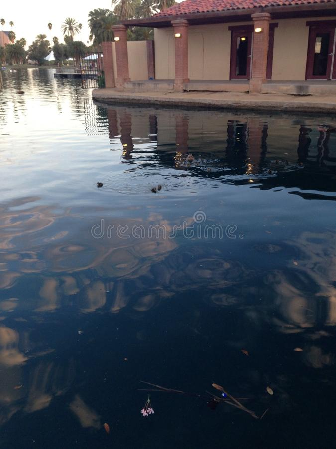 Lac d'étang de Phoenix de parc d'Encanto images libres de droits