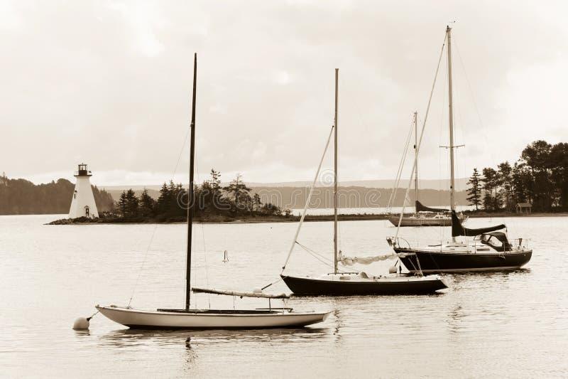 Lac d'Or de soutiens-gorge image libre de droits