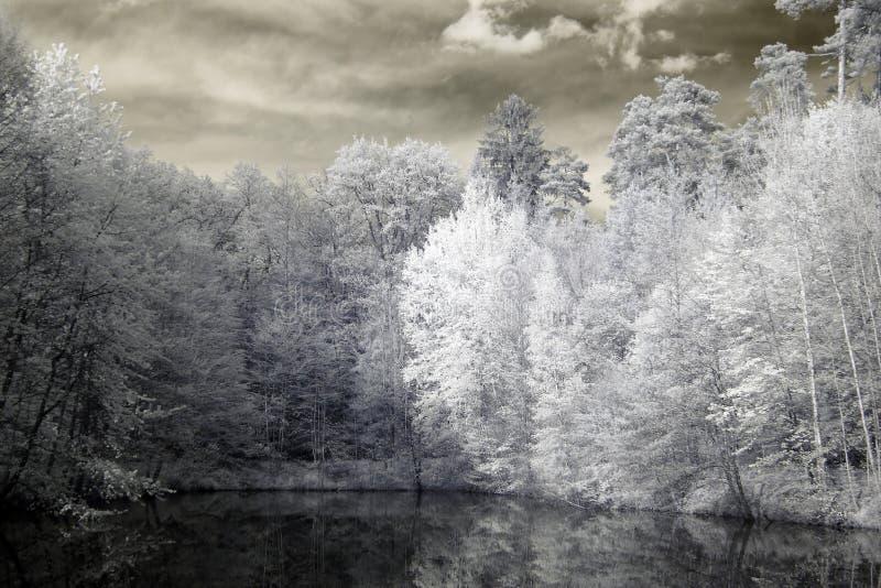 Lac dans l'infrarouge photographie stock