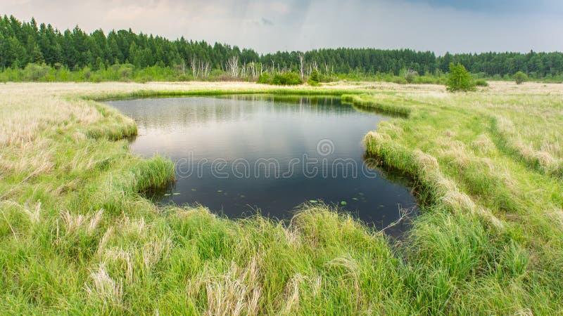 Lac dans la campagne images libres de droits