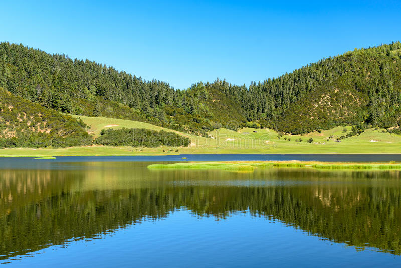 Download Lac dans la forêt image stock. Image du clear, montagne - 76086689