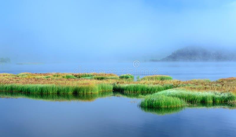 Download Lac dans la forêt photo stock. Image du outdoors, propre - 76087220