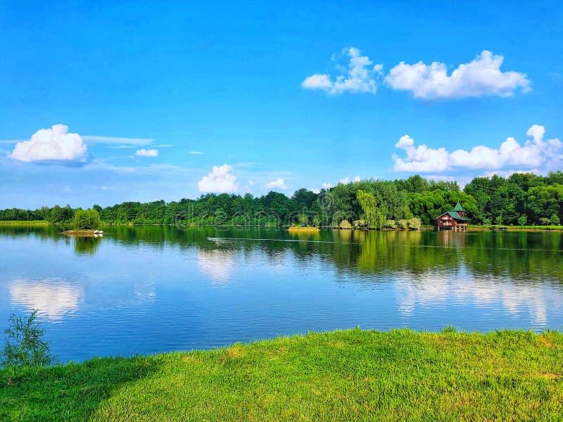 Lac dans la forêt Nature de l'Ukraine photographie stock libre de droits