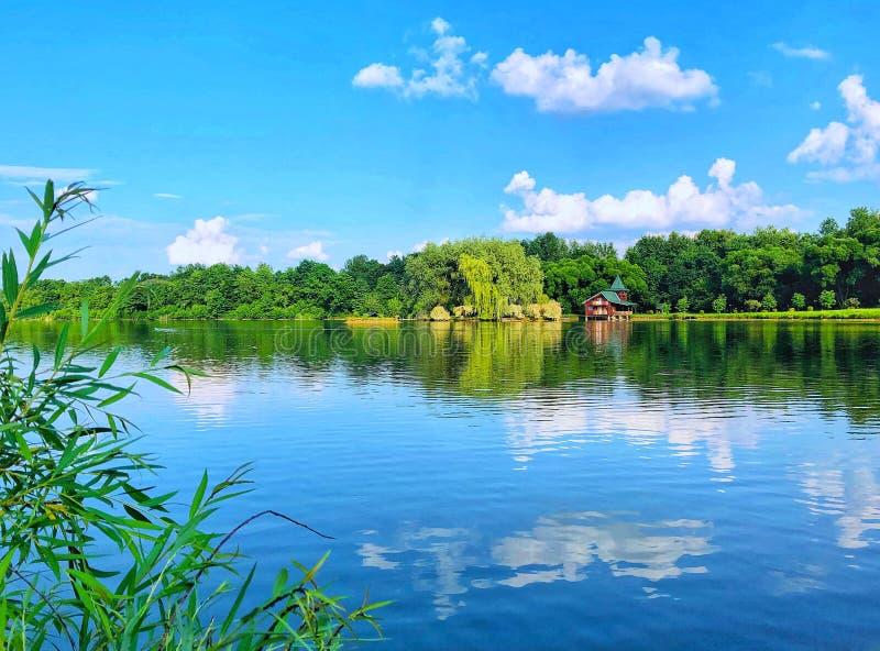Lac dans la forêt Nature de l'Ukraine image libre de droits