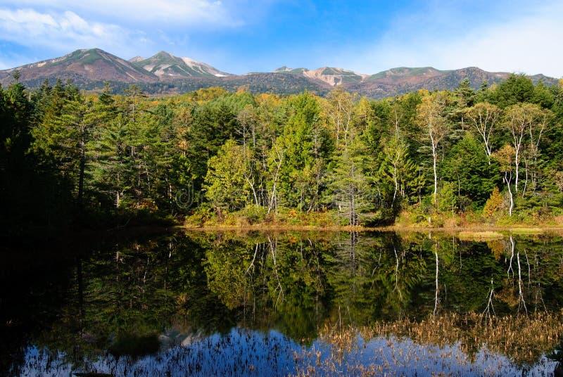 Lac dans la forêt profonde photo libre de droits