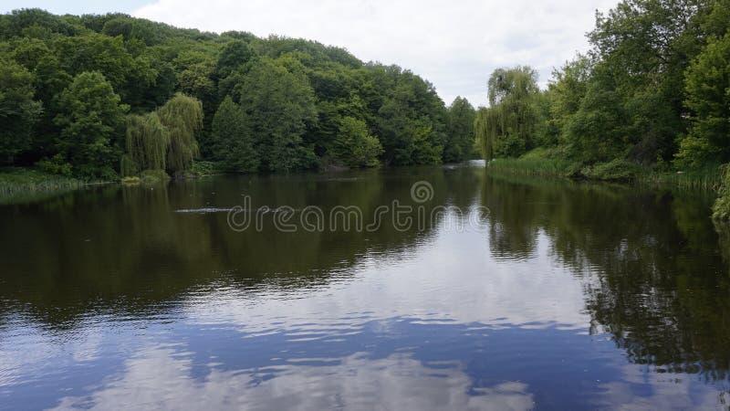 Lac dans la terre en friche de Kitaevo photographie stock