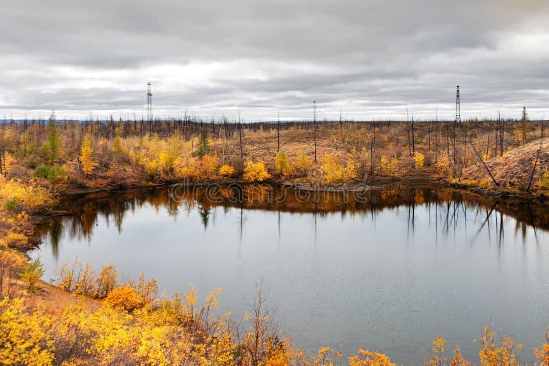 Lac dans la toundra dans la péninsule de Taimyr photo stock