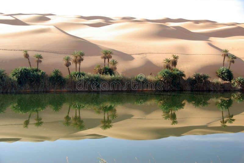 Lac dans le désert de la Libye images libres de droits