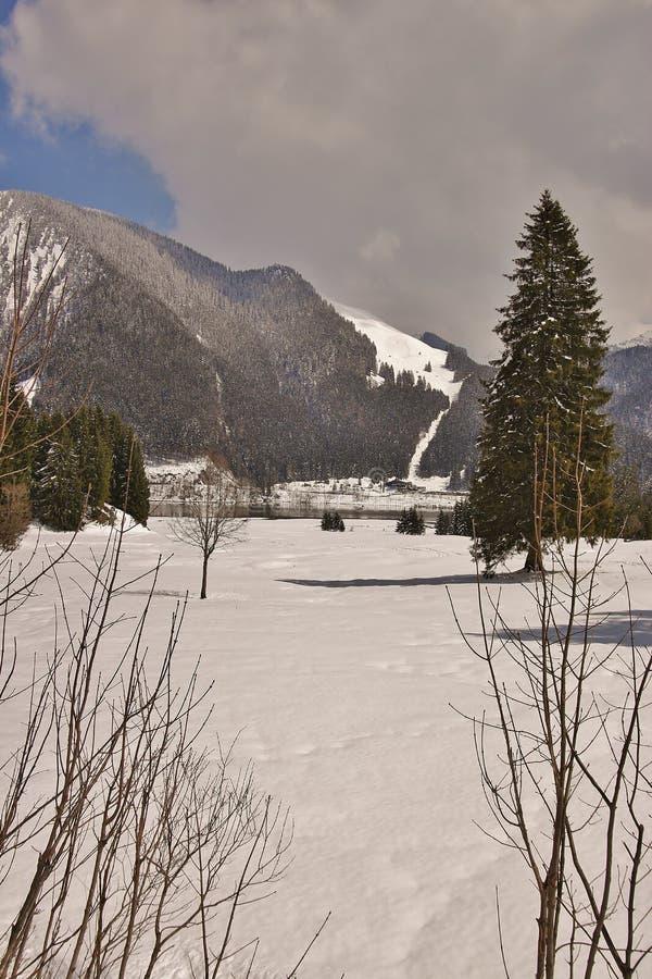 Lac dans les Alpes photographie stock libre de droits