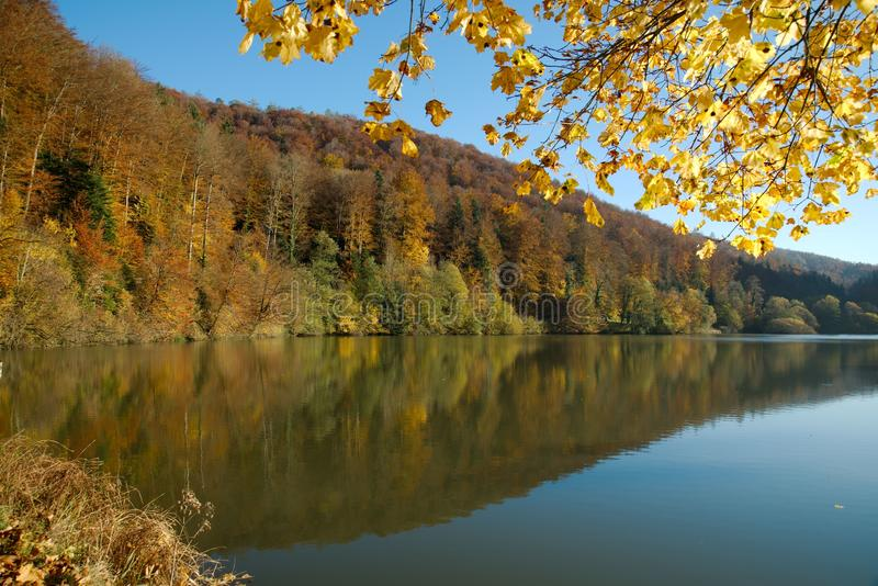 Lac de Lucelle Lucelle See mit Waldreflexion im Herbst lizenzfreies stockfoto