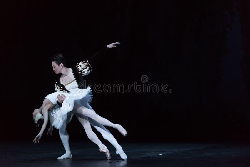Lac de mort swan de cygne-ballet image stock