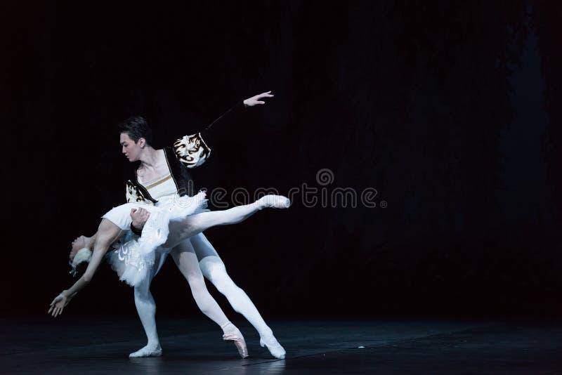 Lac de mort swan de cygne-ballet images libres de droits