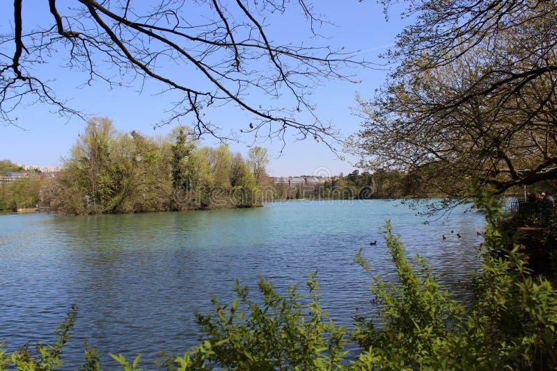 Lac de parc de Lyon photos libres de droits