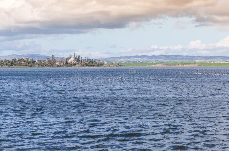 Lac de sel de Larnaca photos stock