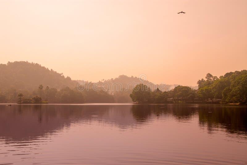 Lac de temple du Sri Lanka Kandy images libres de droits