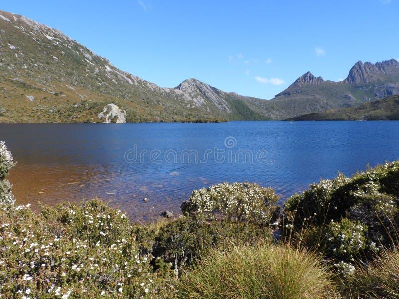 Lac dove, Tasmanie images libres de droits