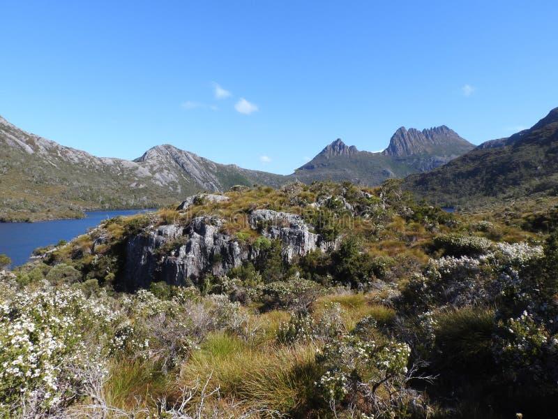 Lac dove, Tasmanie photo libre de droits