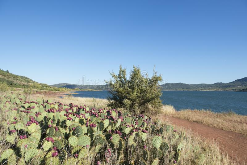 Lac du Salagou in Frankreich lizenzfreies stockfoto