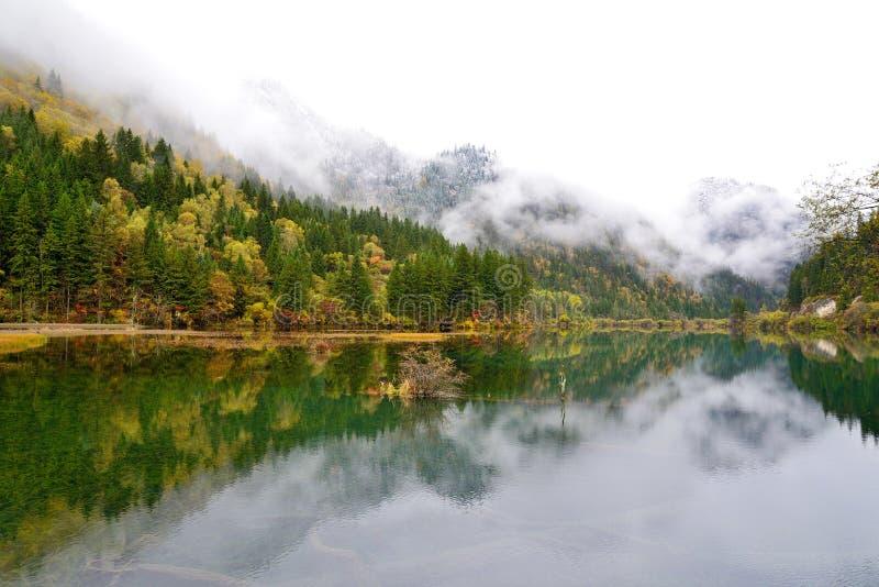 Lac en bambou arrow, Jiuzhaigou, Chine photos libres de droits
