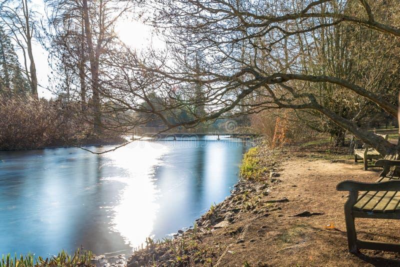 Lac en hiver dans des jardins de Kew, Londres images libres de droits