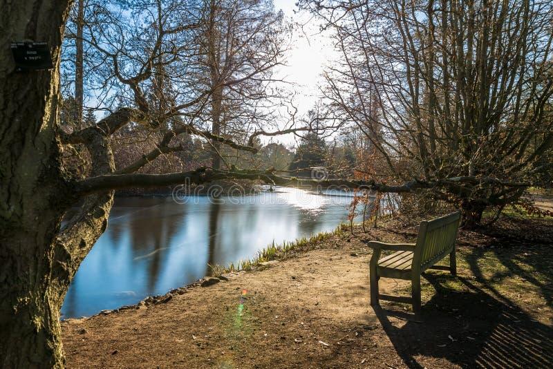 Lac en hiver dans des jardins de Kew, Londres images stock