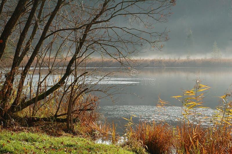 Lac en novembre image libre de droits