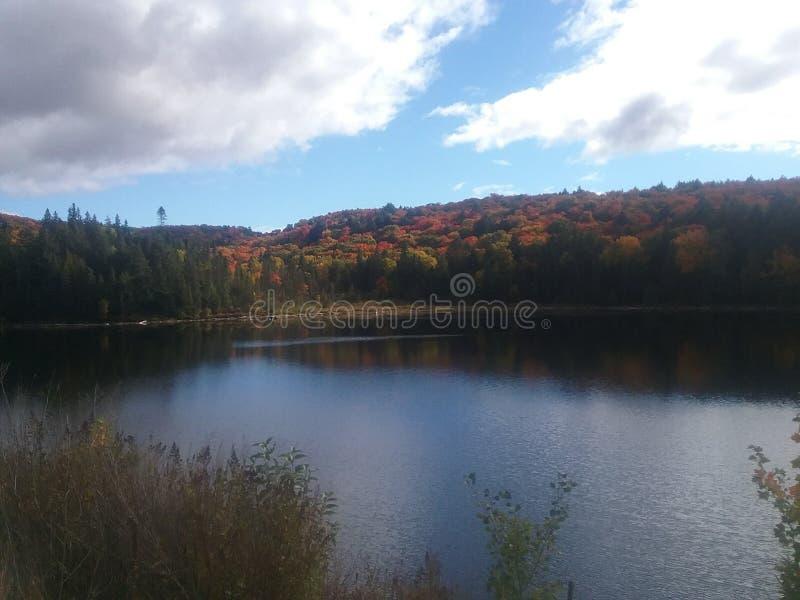 Lac en parc d'algonquin images libres de droits
