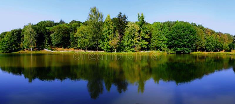 Lac et arbres photos stock