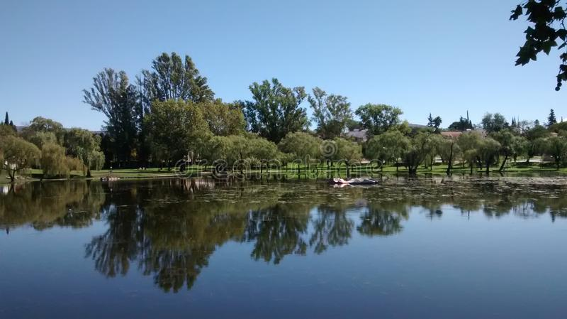 Lac et arbres photographie stock libre de droits