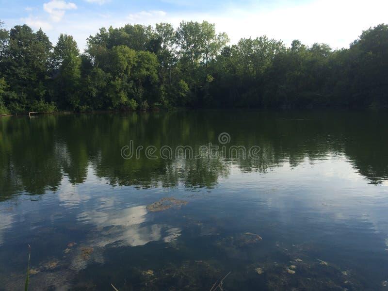 Lac et arbres images stock