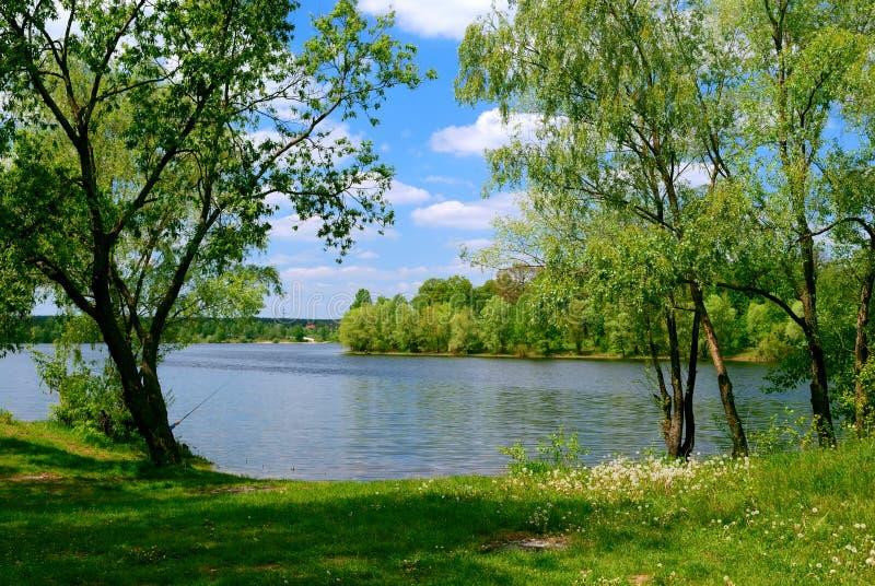 Lac et arbres verts images stock