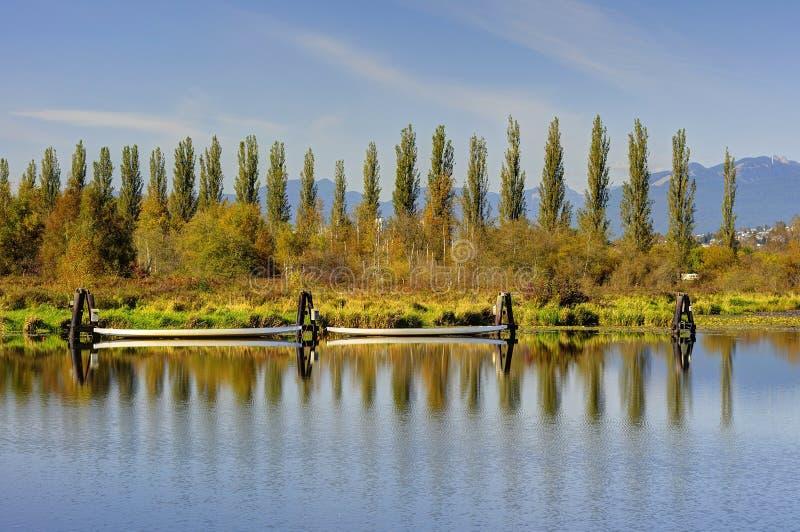 Lac et bord de lac Burnaby images stock