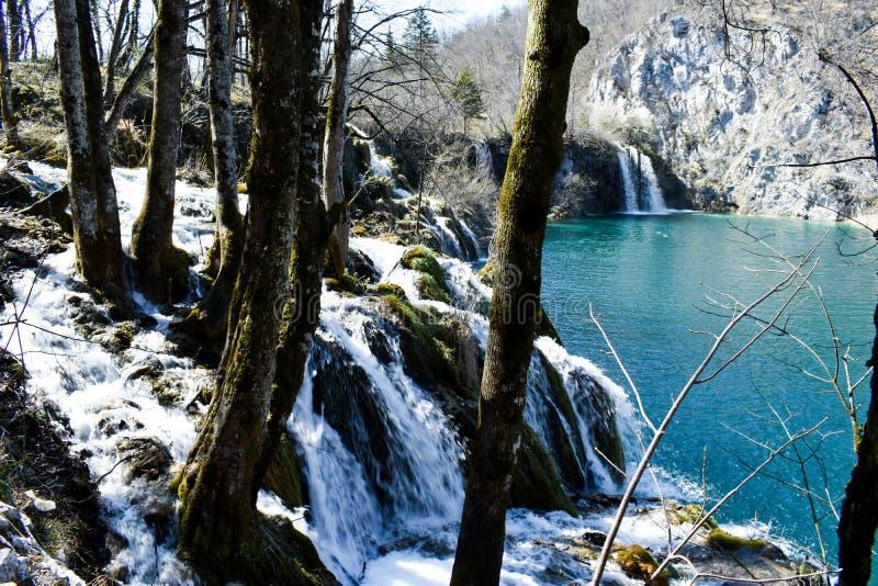 Lac et cascades bleus des lacs Plitvice en Croatie pendant le premier ressort images libres de droits
